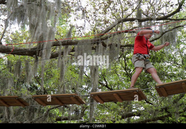 Rope Bridge Aerial Stock Photos Rope Bridge Aerial Stock