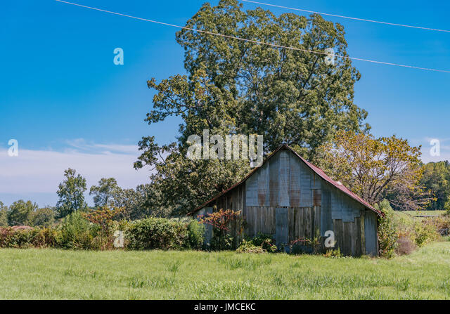 Old weathered barn, in Alabama, USA, with a red metal roof sitting in a green field. - Stock Image