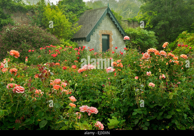 Cottage garden stock photos cottage garden stock images for Irish garden designs