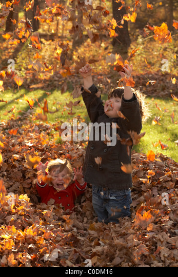 Kids playing in the fall leaves - Stock Image