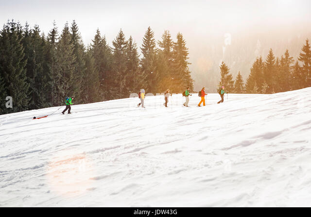 Cross country skiers - Stock-Bilder