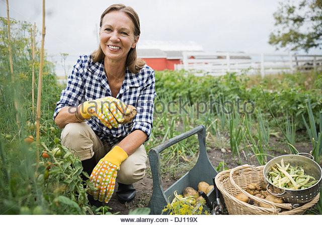 Portrait of senior woman harvesting vegetables - Stock Image
