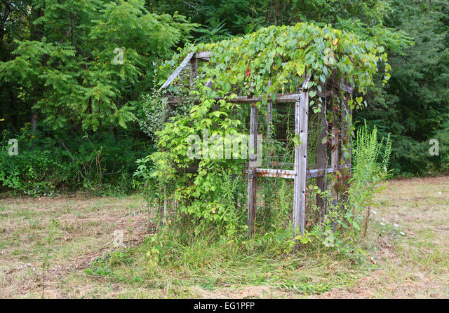 Chicken cage stock photos chicken cage stock images alamy for Old farm chicken coops