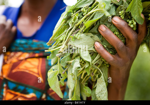 A Rwandan mother holds a handful of greens. - Stock Image