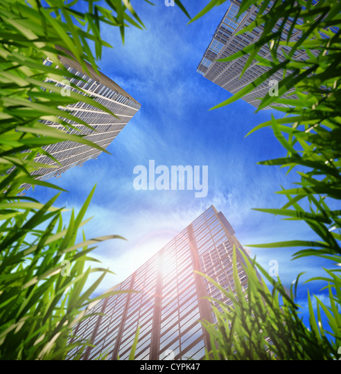 green grass and skyscrapers, aspiring to the sky in the background. Shallow DOF - Stock-Bilder