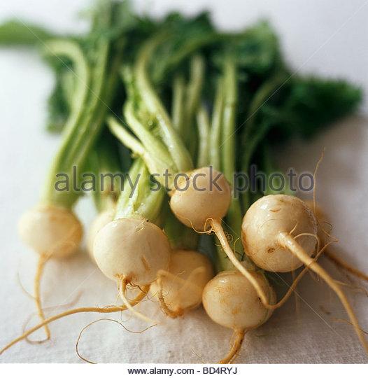 White turnips - Stock Image
