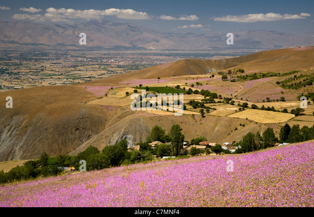 Scenic view of Karasu Valley Erzincan Turkey - Stock Image