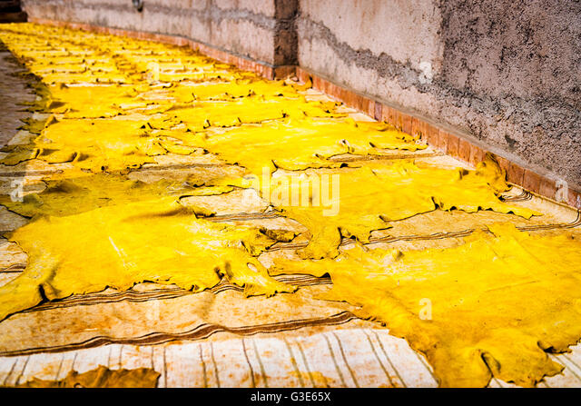 Yellow tinted leather drying in the sun in a tannery in Fez, Morocco - Stock-Bilder