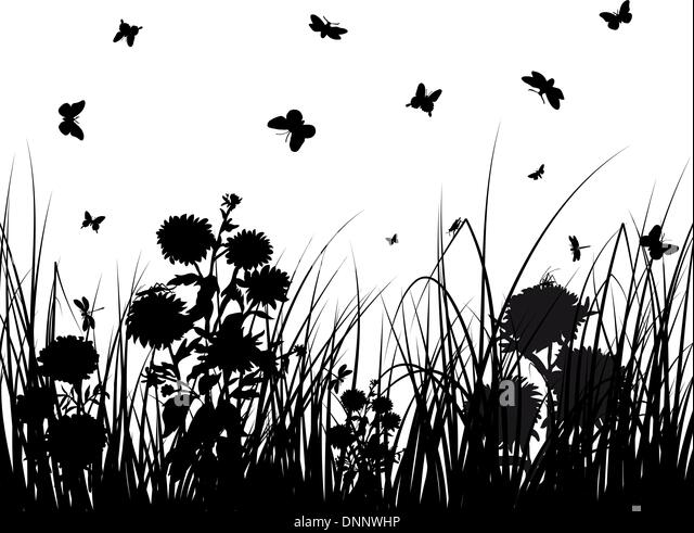 Vector grass silhouettes backgrounds with butterflies - Stock Image
