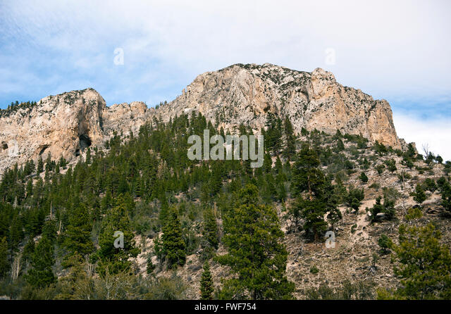 Nevada high country in Clark County Nevada near Mount Charleston - Stock Image