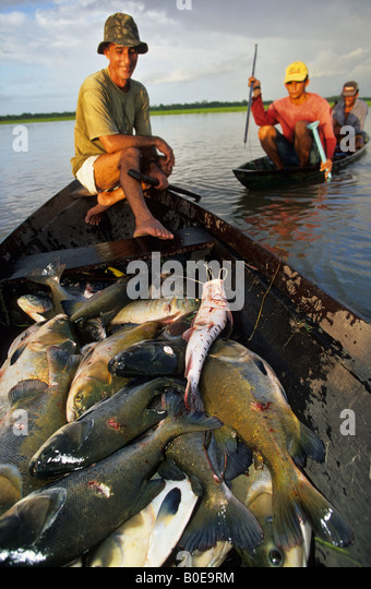 harpoon fishermen from a remote fishing community in dugout canoe out in the flooded forest (varzea) Amazon rainforest - Stock Image