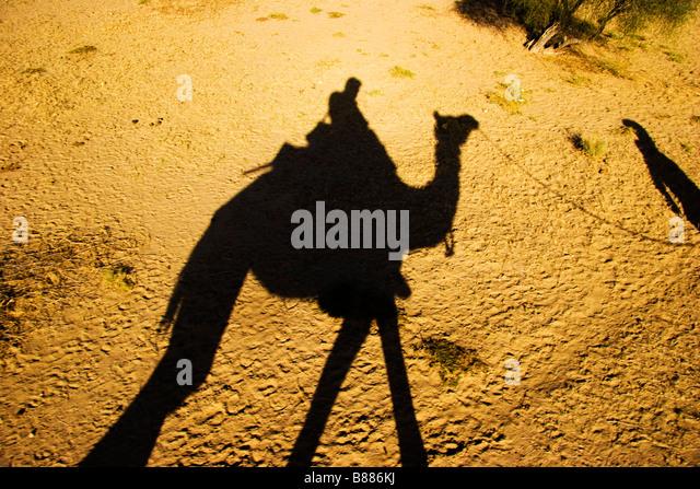 Tourist rides camel in desert Khuri Rajasthan India - Stock-Bilder