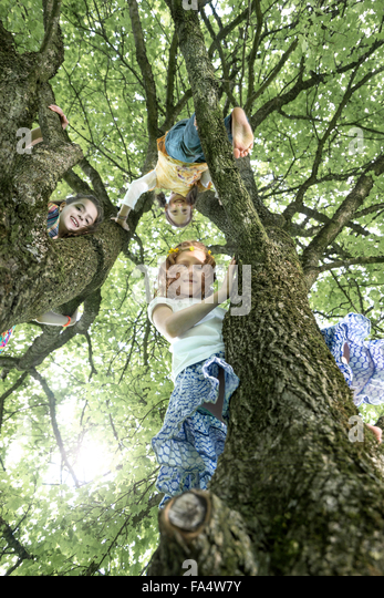 Girls climbing on tree, Munich, Bavaria, Germany - Stock Image