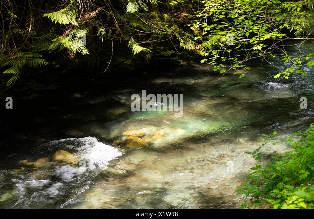 The Beautiful Colours of River Cheakamus Flowing Through Brandywine Provincial Park Near Whistler British Columbia - Stock Image