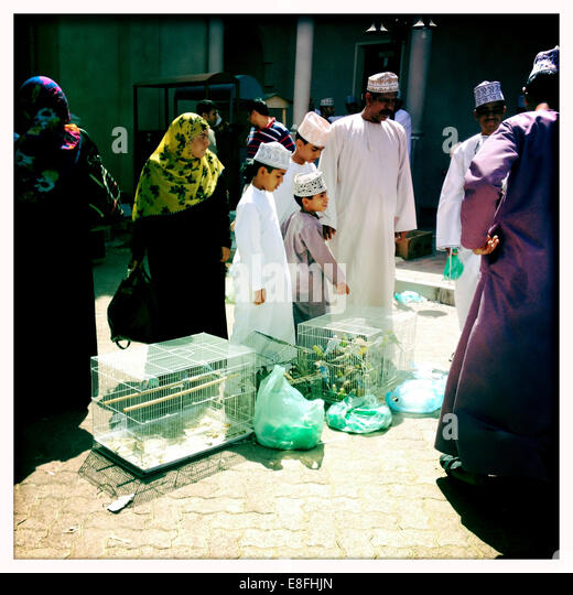 Oman, Nizwa, Local bird market - Stock Image