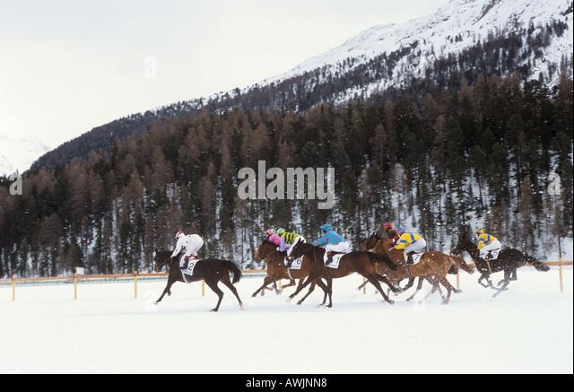 horse racing in snow - in St. Moritz - Stock Image
