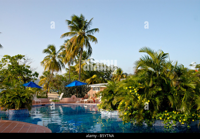 Grenada swimming pool private villa palm trees Spice Island Beach Resort couple lounging - Stock Image