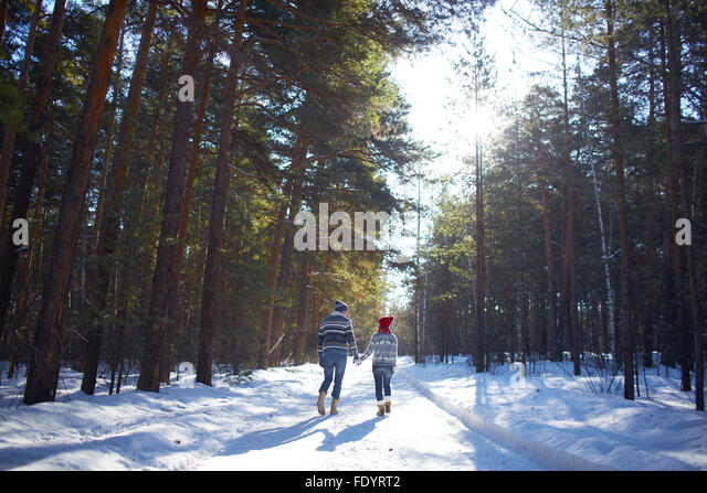 Rear view of couple in jeans and sweaters walking in winter forest - Stock-Bilder