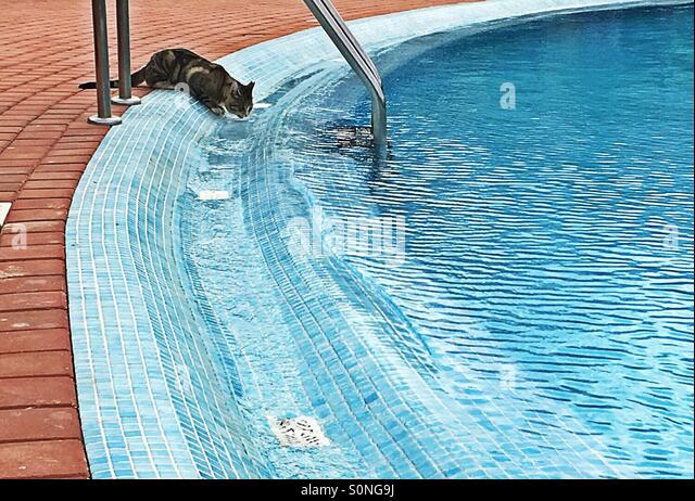 Tongue hotel stock photos tongue hotel stock images alamy How to make swimming pool water drinkable