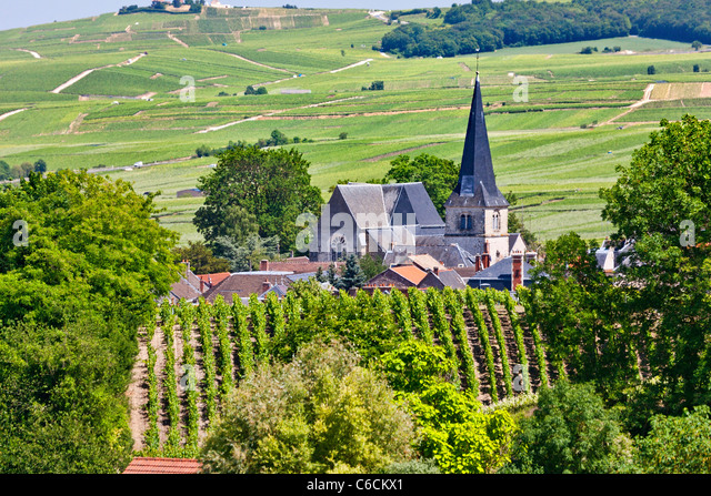 France, Marne, Rilly la Montagne, a village close to Reims associated with Champagne wine - Stock Image