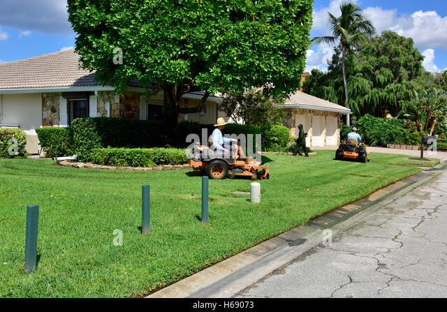 Ride on mower stock photos ride on mower stock images alamy for Myers lawn and garden