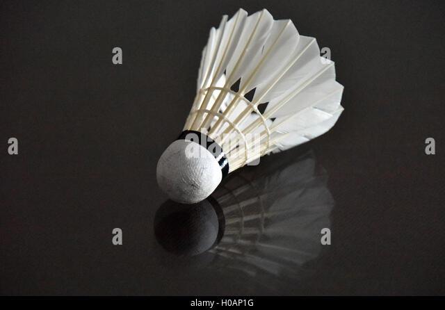 Badminton - Stock Image