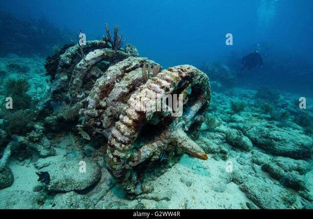 Scuba diver approaches a set of winch gears located at a dive site known as the 'Winch Hole' on Molasses - Stock-Bilder