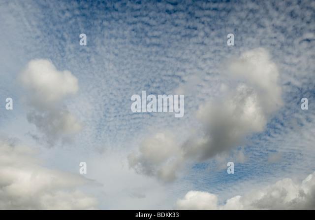Altocumulus undulatus clouds - Stock Image