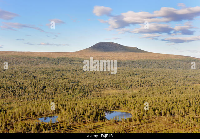color image Dalarna forest horizontal landscape mountain nature Scandinavia Scandinavian mountain summer Sweden - Stock-Bilder
