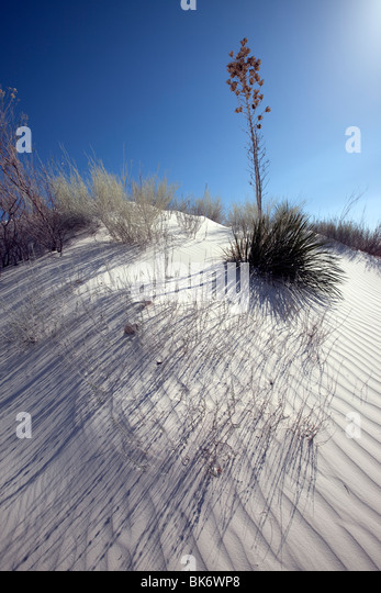 White Sands National Monument, New Mexico - Stock Image