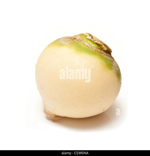Turnip isolated on a white studio background. - Stock Image