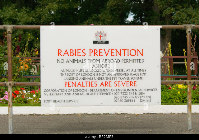 Corporation Of London Rabies Notice Mounted On Railings - Stock Image