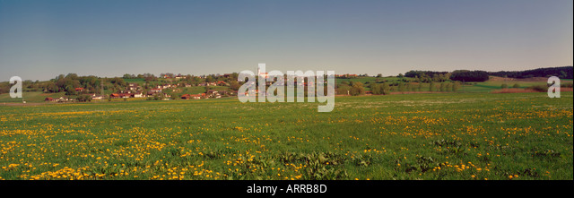 village Oberviehmos in Bavaria and dandelion meadow Germany. Photo by Willy Matheisl - Stock Image