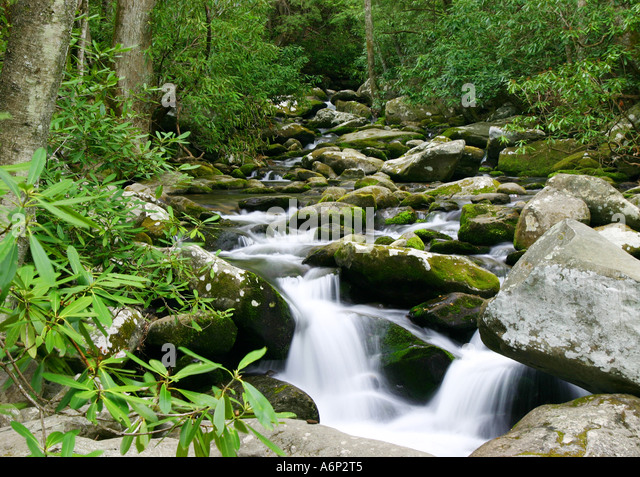 Stones river tennessee stock photos stones river for Roaring fork smoky mountains