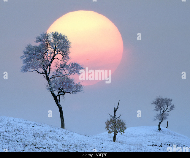 GB - SCOTLAND: Winter Sunset at Glen Lochsie - Stock Image