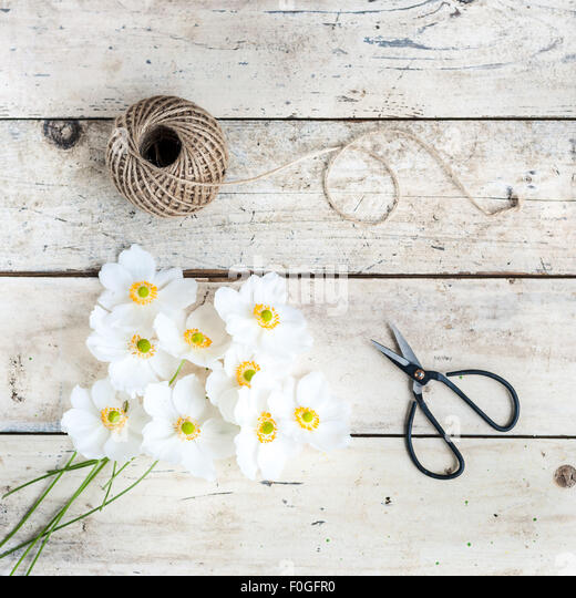 japanese anemones with scissors and twine - Stock Image