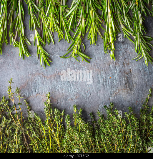 Thyme  and rosemary sprigs on the stone table square - Stock Image