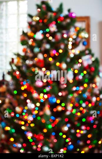 Christmas tree with lights - Stock Image