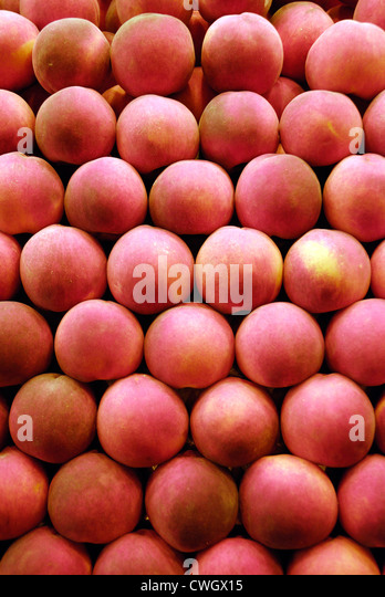 Rows of peaches on sale in market - Stock Image