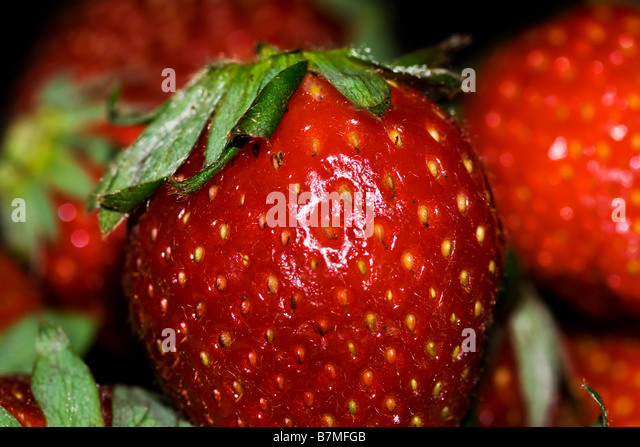 Macro photograph of a Strawberry - Stock Image