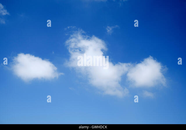 Blue sky with Cumulus clouds looking up - Stock Image