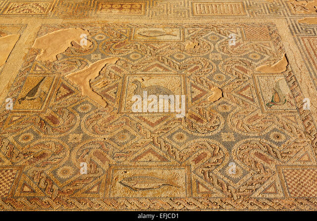 Cyprus mosaics at ancient Kourion, Curium, - Stock Image