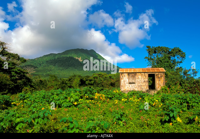Mount Nevis, green volcano peak, open fields, Island of Nevis, St Kitts and Nevis, Caribbean island idyllic tropical - Stock Image