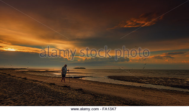 An idyllic and peaceful sunrise scene by the beach in Connecticut with a lonely walker, seagulls and beautiful golden - Stock Image