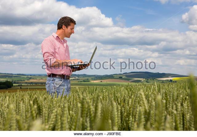 Farmer Standing In Wheat Field Using Laptop Computer - Stock-Bilder