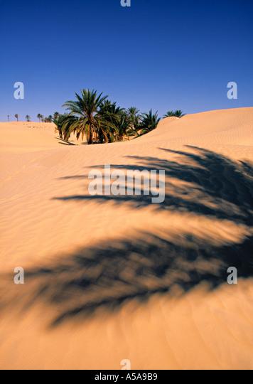 Sahara Desert, Douz, Tunisia - Stock Image