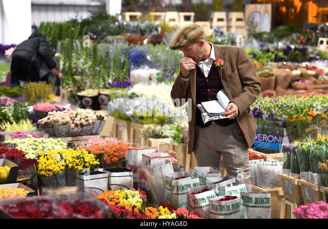 EDITORIAL USE ONLY Flower trader, Eddie Martin, prepares blooms at the Flower Market at New Covent Garden Market - Stock Image