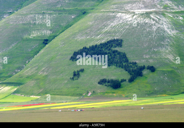 Map or 'boot' of Italy planted in trees ,Piano Grande,Sibillini National Pk.Le  Marche ,Italy - Stock Image
