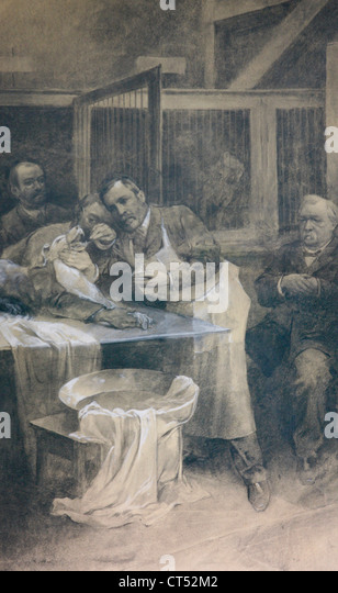 HISTORY OF MEDICINE, RABIES - Stock Image