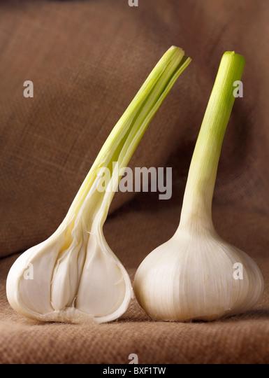 Fresh Garlic whole and half - Stock Image